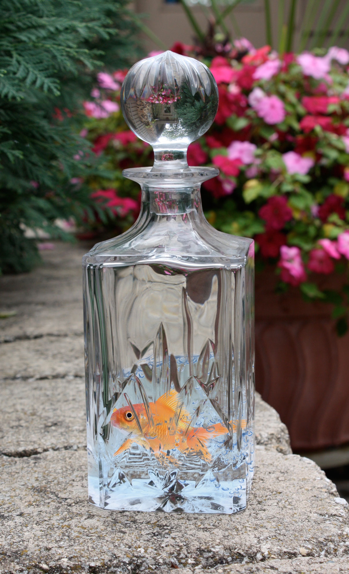 Fish in a decanter