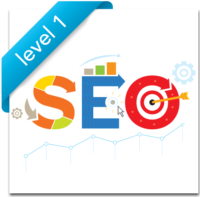 SEO Training Chicago